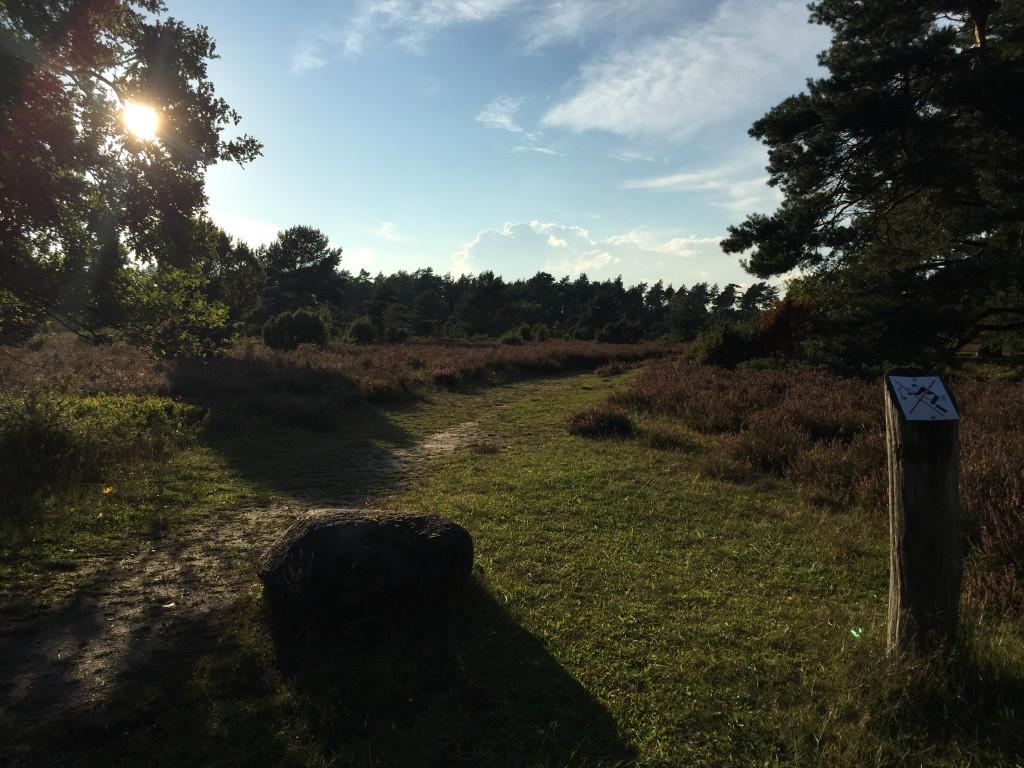 Sonnenuntergang Tiefental